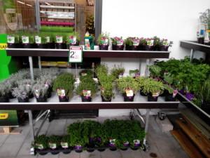 marché aux fleurs - tablar laqué avec étage