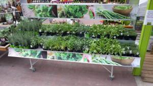 marché aux fleurs - kit animation bandeaux haut et bas