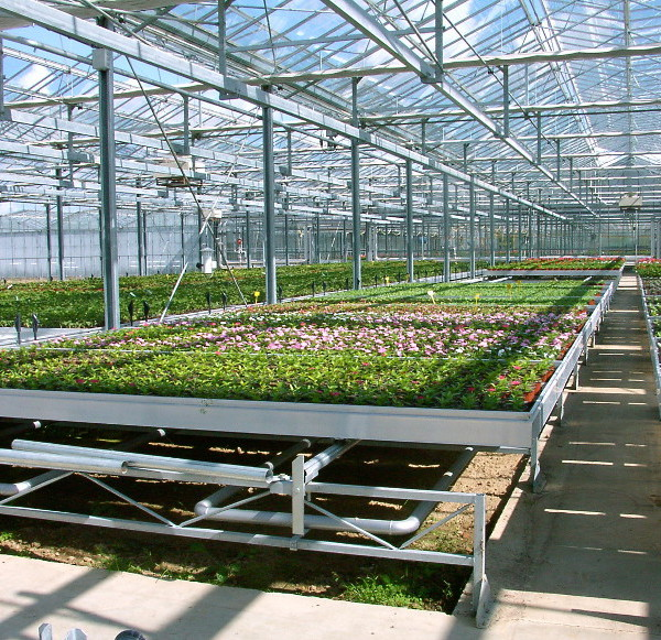 horticulture - bacs roulants