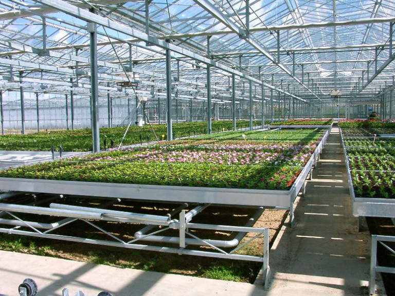 horticulture - bacs roulants