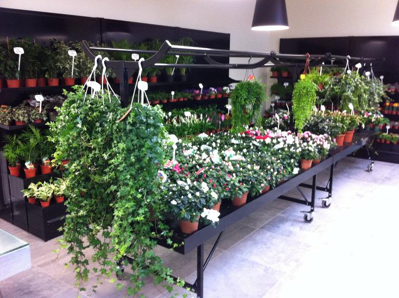 marché aux fleurs - support suspensions sur tête de table