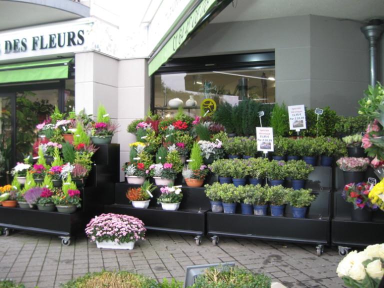 meuble fleuriste : presentoir fleurs devant vitrine