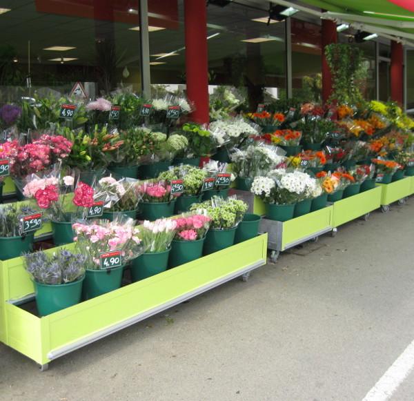 Pr sentoir lin aire ext rieur gamme fleuristerie - Presentoir plantes exterieur ...