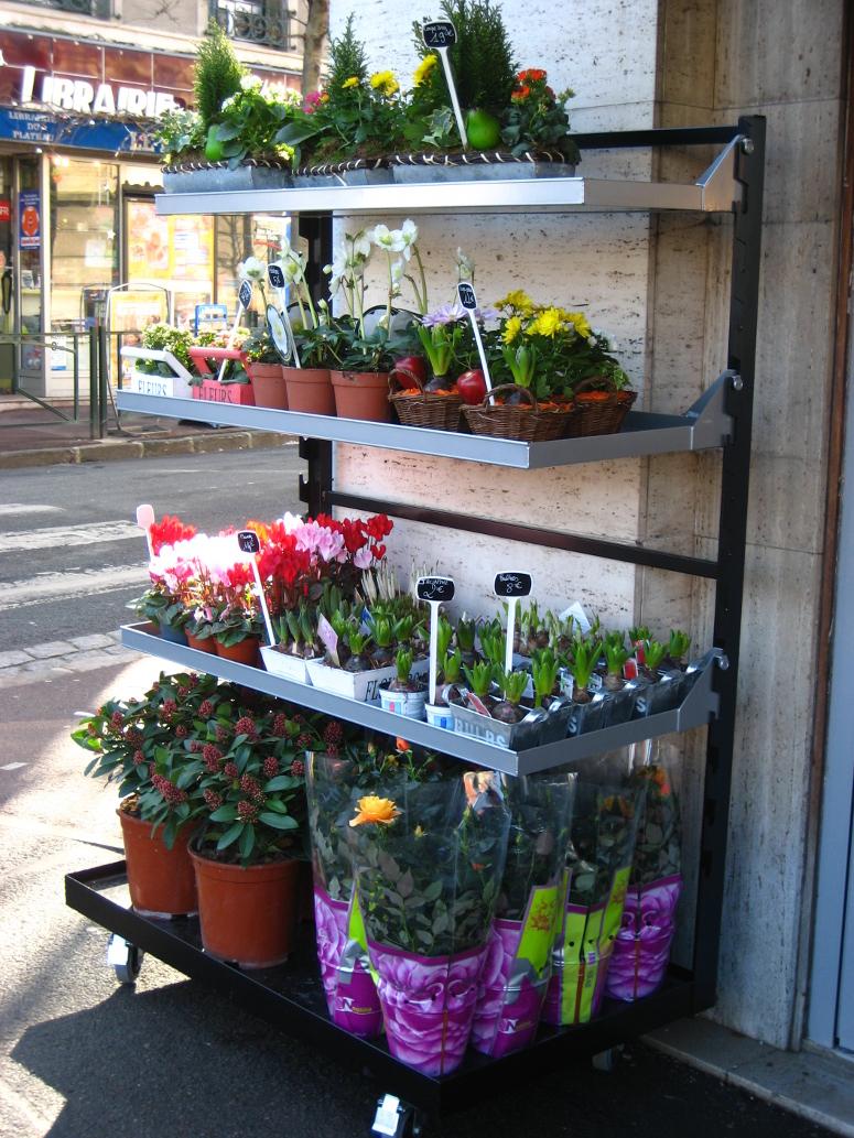 presentoir universel pour fleurs et plantes