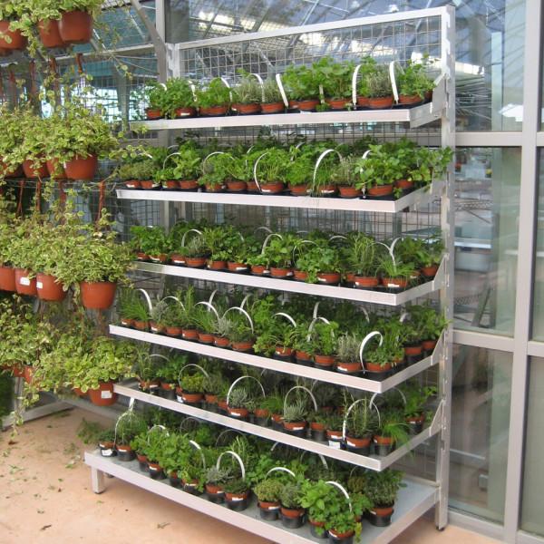 marché aux fleurs - présentoir universel tout aluminium