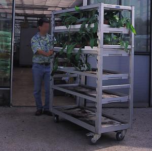 horticulture - chariot crémaillère