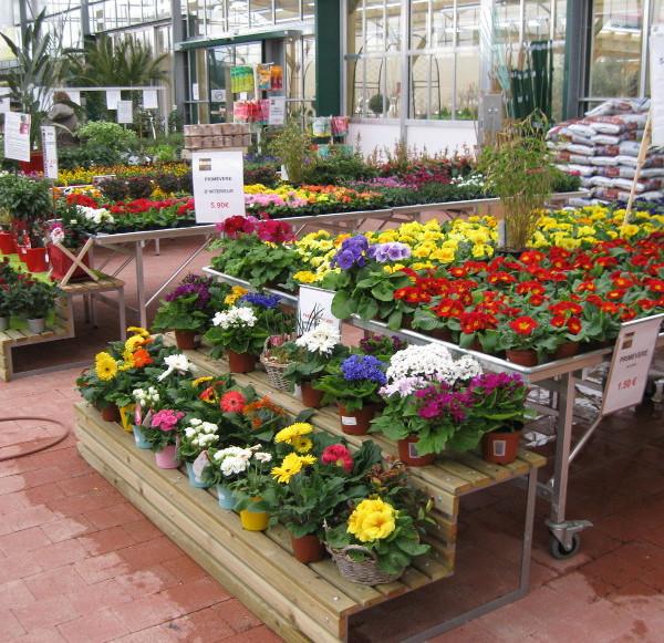 marché aux fleurs - gradins bois