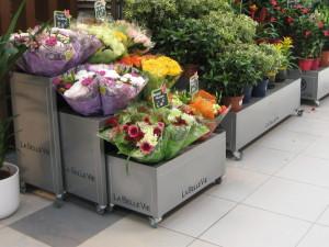 presentoirs fleurs petits formats