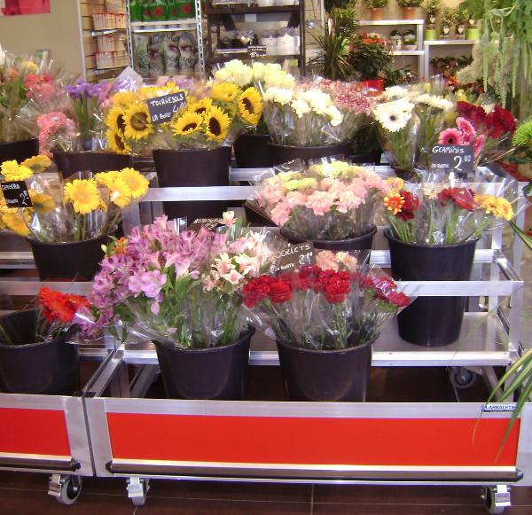 presentoir lineaire fleurs a la botte