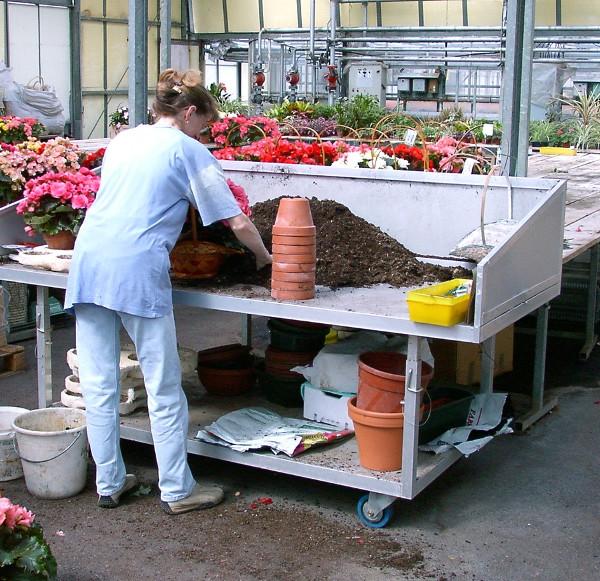 horticulture - table d'empotage réglable en hauteur