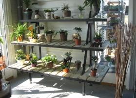 Jardinerie et Horticulture - meubles boutique