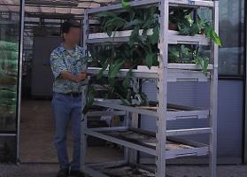 Jardinerie et Horticulture - chariot crémaillère