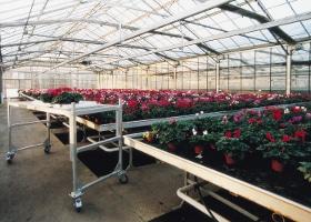 Jardinerie et Horticulture - chariot enjambeur