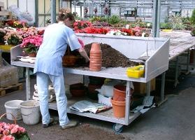 Jardinerie et Horticulture - tables de travail