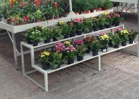 Jardinerie et Horticulture - gradins laqué