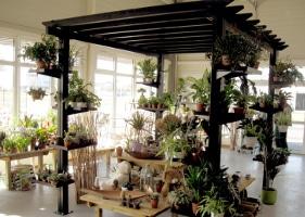 Jardinerie et Horticulture - pergola intérieure