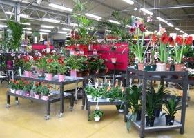 Jardinerie et Horticulture - tables bacs