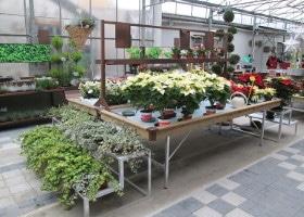 Jardinerie et Horticulture - tablars habi