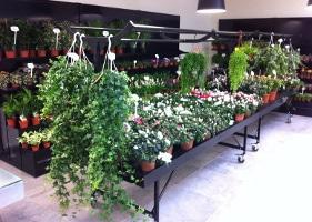 Jardinerie et Horticulture - equipement pour suspensions
