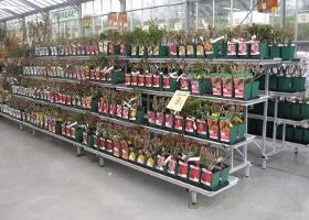 Jardinerie et Horticulture - présentoirs gradins et gouttières