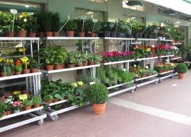 Jardinerie et Horticulture - présentoirs universels