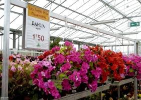 Jardinerie et Horticulture - porte-étiquettes suspendus